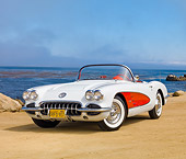 VET 02 RK0369 01