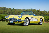 VET 02 RK0378 01