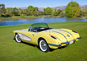 VET 02 RK0380 01
