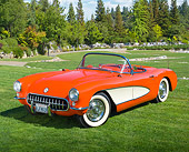 VET 02 RK0382 01