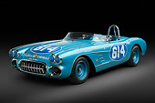 VET 02 RK0389 01