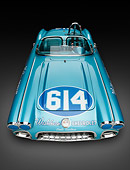 VET 02 RK0393 01