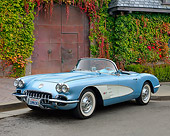 VET 02 RK0395 01