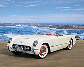 VET 02 RK0396 01