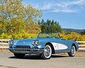VET 02 RK0398 01