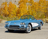 VET 02 RK0399 01