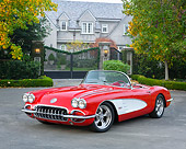 VET 02 RK0404 01