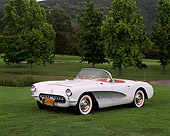 VET 02 RK0034 04