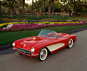 VET 02 RK0046 06