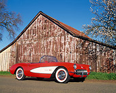 VET 02 RK0055 02