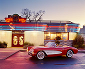 VET 02 RK0056 02