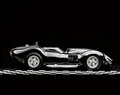 VET 02 RK0074 01