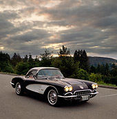 VET 02 RK0106 01