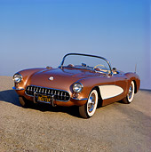 VET 02 RK0125 02