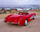 VET 02 RK0165 03