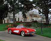 VET 02 RK0178 02