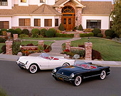 VET 02 RK0192 01