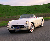 VET 02 RK0223 03