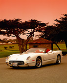 VET 02 RK0238 10