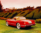 VET 02 RK0289 02