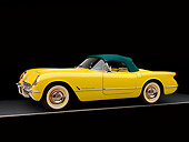 VET 02 RK0293 01
