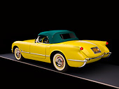 VET 02 RK0294 01