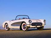 VET 02 RK0297 01
