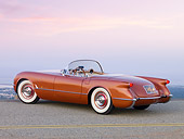 VET 02 RK0311 01