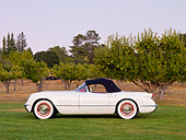 VET 02 RK0327 01