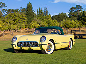 VET 02 RK0330 01
