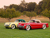 VET 02 RK0334 01