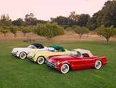 VET 02 RK0337 01