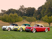VET 02 RK0338 01