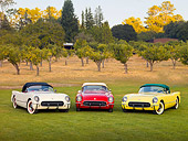 VET 02 RK0340 01