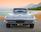 VET 03 BK0006 01