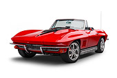 VET 03 BK0018 01