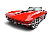 VET 03 BK0020 01