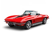 VET 03 BK0023 01