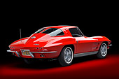 VET 03 BK0024 01