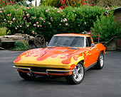 VET 03 RK0303 01