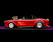 VET 03 RK0437 01