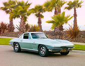 VET 03 RK0642 01