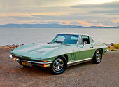 VET 03 RK0643 01