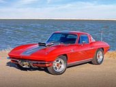 VET 03 RK0647 01