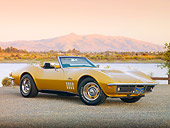 VET 03 RK0655 01