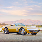 VET 03 RK0656 01