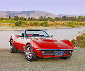 VET 03 RK0658 01