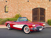 VET 03 RK0664 01
