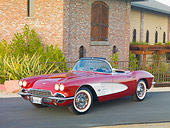 VET 03 RK0665 01
