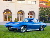 VET 03 RK0670 01